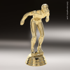 Click this Image to visit the  Swimming Trophy Awards category.